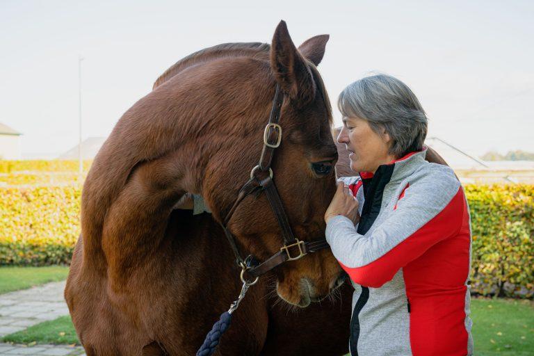Paardenosteopathie-19