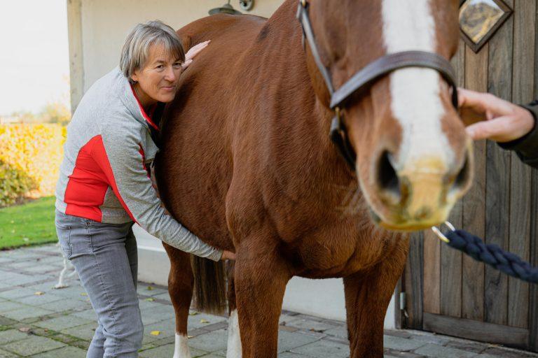 Paardenosteopathie-32
